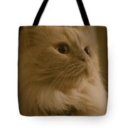 Beautiful Creamy Persian Cat Mix Portrait Tote Bag