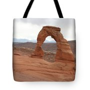 Beautiful Delicate Arch Tote Bag
