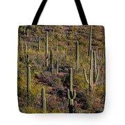 Beautiful Desert Morning Tote Bag