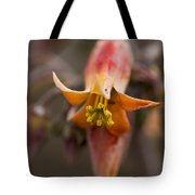 Beautiful Echeveria Bell Tote Bag