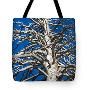 Beautiful Even Naked Tote Bag