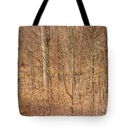 Beautiful Fine Structure Of Trees Brown And Orange Tote Bag