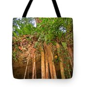 Beautiful Forest Tote Bag