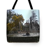 Beautiful Fountain In Lal Bagh Tote Bag