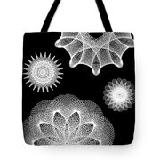 Beautiful Geometry Bw Tote Bag