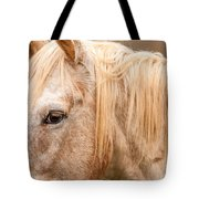 Beautiful Gray Horse Portrait Tote Bag
