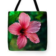 Beautiful Hibiscus Tote Bag