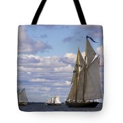 Beautiful History Tote Bag