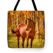 Beautiful Horse In The Autumn Aspen Colors Tote Bag by James BO  Insogna