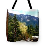 Beautiful Idyllwild Tote Bag