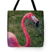 Beautiful In Pink Tote Bag