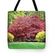 Beautiful Japanese Maple Tote Bag