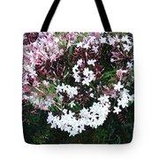 Beautiful Jasmine Flowers In Full Bloom Tote Bag