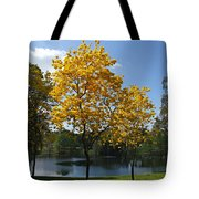 Beautiful Lake Como Tote Bag