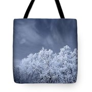Beautiful Landscape With A Stormy Wind Tote Bag