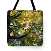 Beautiful Leaf Blanket Tote Bag