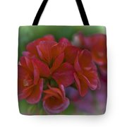 Beautiful Little Red Flowers Tote Bag