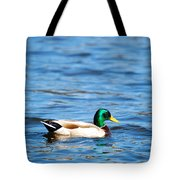 Beautiful Male Mallard Tote Bag
