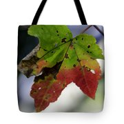 Beautiful Maple Leaf Tote Bag
