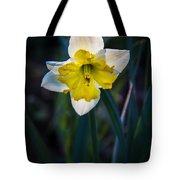 Beautiful Narcissus Tote Bag