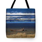Beautiful Ocean Shores Tote Bag