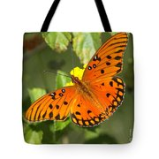 Beautiful Orange Butterfly - Gulf Fritillary Tote Bag