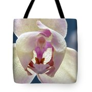 Beautiful Orchid Tote Bag by Dana Moyer