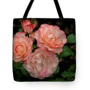 Beautiful Peach Roses Tote Bag