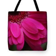 Beautiful Petals Tote Bag