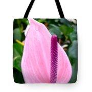 Beautiful Pink Anthurim Flower Tote Bag