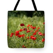 Beautiful Poppies 3 Tote Bag