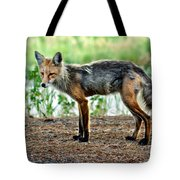 Beautiful Red Fox Tote Bag