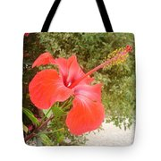 Beautiful Red Hibiscus Flower With Garden Background Tote Bag