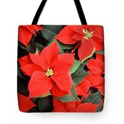 Beautiful Red Poinsettia Christmas Flowers Tote Bag