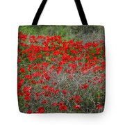 Beautiful Red Wild Anemone Flowers In A Spring Field Tote Bag