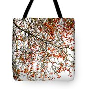 Beautiful Rowan 1 Tote Bag