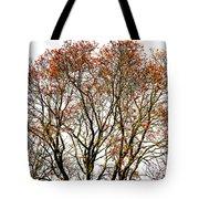 Beautiful Rowan 11 Tote Bag