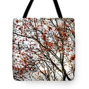 Beautiful Rowan 3 - Square Tote Bag