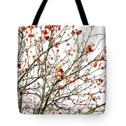 Beautiful Rowan 4 Tote Bag