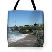 Beautiful Santa Cruz Coast Tote Bag