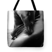 Beautiful Sea Lion - Black And White Tote Bag