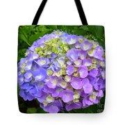 Beautiful Shades Of Indigo Tote Bag