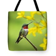 Beautiful Summer Hummer Tote Bag