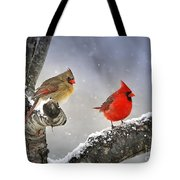 Beautiful Together Tote Bag