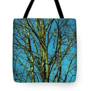 Beautiful Turquoise Sky Tote Bag