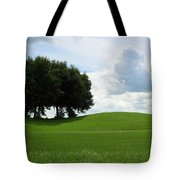 Beautiful View Tote Bag
