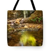 Beautiful View Of Upper Falls Located In Uvas Canyon County Park Forest Reflection Tote Bag