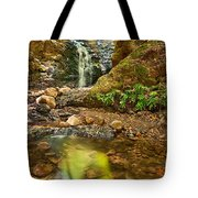 Beautiful View Of Upper Falls Located In Uvas Canyon County Park. Tote Bag