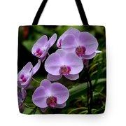 Beautiful Violet Purple Orchid Flowers Tote Bag