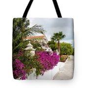 Beautiful Walk Tote Bag
